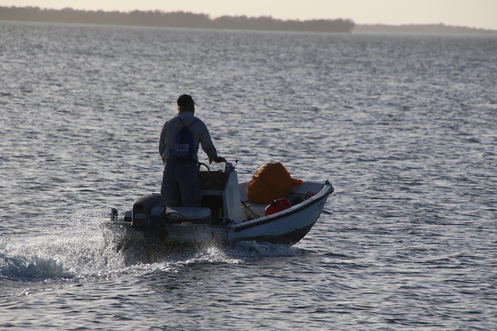 Fisherman Driving a Skiff