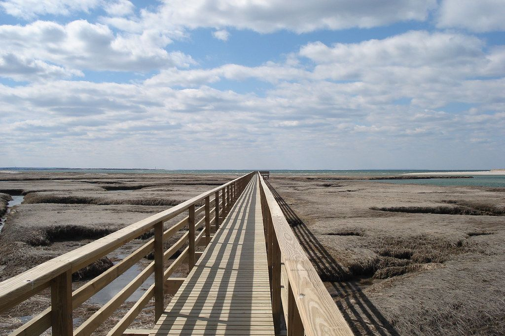"""""""Bass Hole Boardwalk (Grays Beach), Yarmouth MA, Cape Cod, Credit: William DeSousa-Mauk (13)"""" by Massachusetts Office of Travel & Tourism is licensed under CC BY-ND 2.0"""