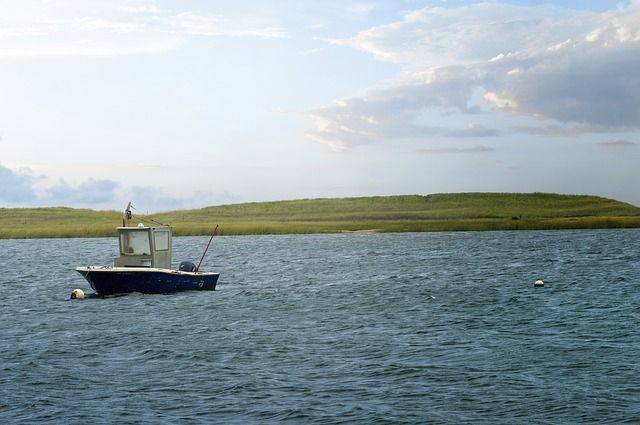 Katama Bay, Martha's Vineyard