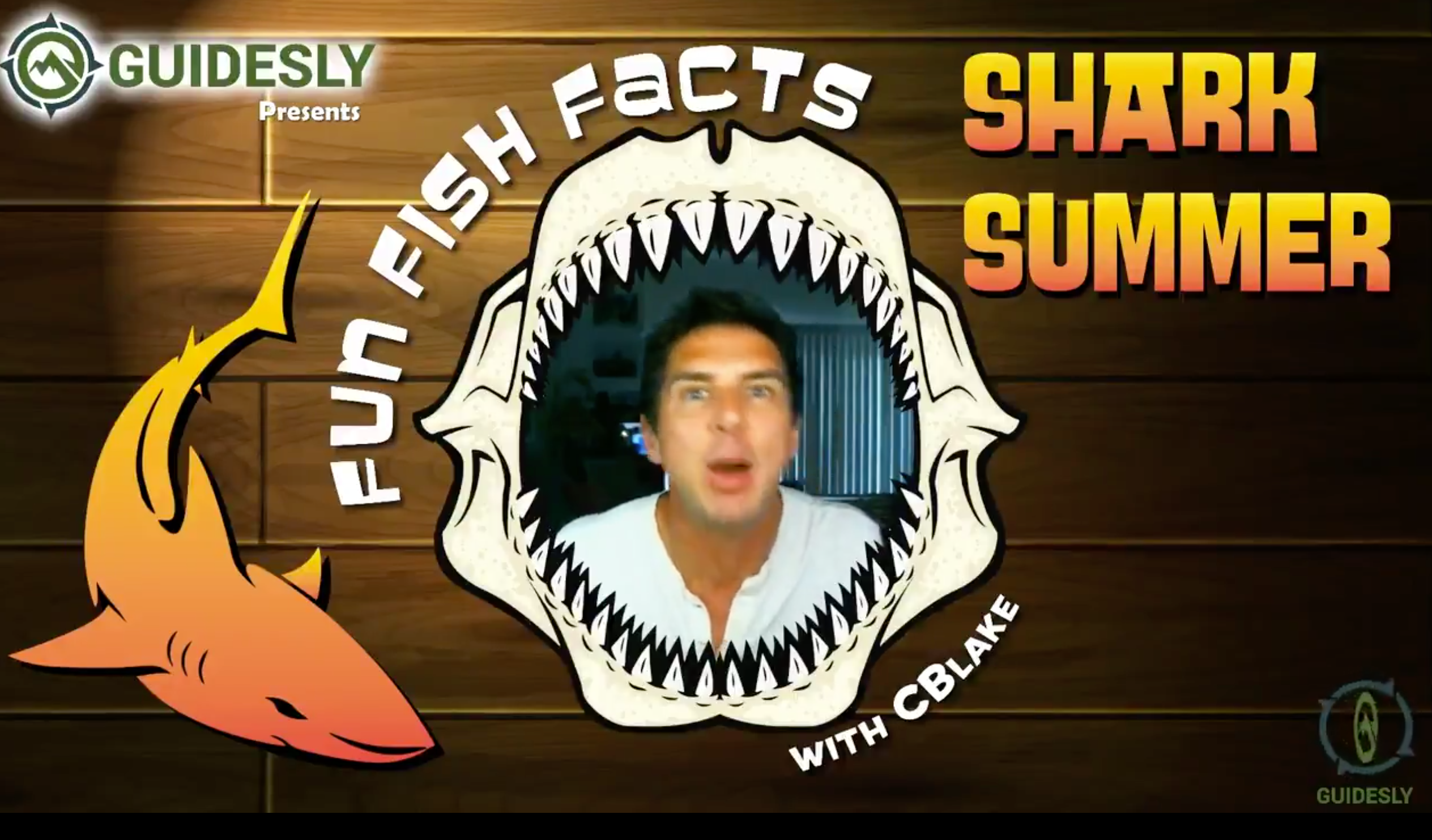 Shark Summer_Fun Fish Facts_Guidesly